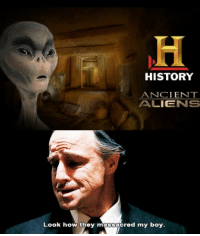 Ancient Aliens: HISTORY  ANCIENT  ALIENS  Look how they massacred my boy.
