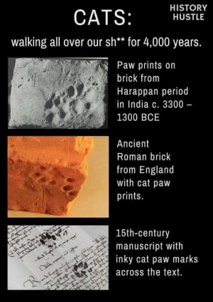 marks: HISTORY  CATS:  HUSTLE  walking all over our sh** for 4,000 years.  Paw prints on  brick from  Harappan period  in India c. 3300 -  1300 BCE  Ancient  Roman brick  from England  with cat paw  prints.  15th-century  manuscript with  inky cat paw marks  IL  across the text.  R