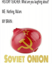 Brain, History, and Onion: HISTORY IEACHER: What are you laughing about  ME:Nothing, Malm  MY BRAIN  SOVIET ONION