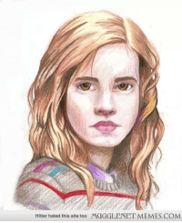 "Hermione, Memes, and Hitler: Hitler hated this site too  MUGGLENET MEMES.COM <p>Hermione colored pencil drawing. <a href=""http://ift.tt/1g0xMd2"">http://ift.tt/1g0xMd2</a></p>"