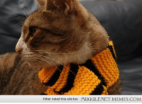 """<p>My friend knitted a Hufflepuff scarf for my cat. <a href=""""http://memes.mugglenet.com/Harry+Potter+Funny+Pics/My-friend-knitted-a-Hufflepuff-scarf-for/6357"""">http://memes.mugglenet.com/Harry+Potter+Funny+Pics/My-friend-knitted-a-Hufflepuff-scarf-for/6357</a></p>: Hitler hated this site too  MUGGLENET MEMES.COM <p>My friend knitted a Hufflepuff scarf for my cat. <a href=""""http://memes.mugglenet.com/Harry+Potter+Funny+Pics/My-friend-knitted-a-Hufflepuff-scarf-for/6357"""">http://memes.mugglenet.com/Harry+Potter+Funny+Pics/My-friend-knitted-a-Hufflepuff-scarf-for/6357</a></p>"""