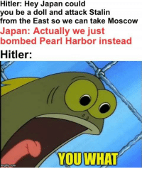 Hitler, Japan, and Pearl Harbor: Hitler: Hey Japan could  you be a doll and attack Stalin  from the East so we can take Moscow  Japan: Actually we just  bombed Pearl Harbor instead  Hitler:  YOUWHAT  mgrlip.com Threw this together real quick but I think it's pretty solid https://t.co/vPOxkJ5rFM