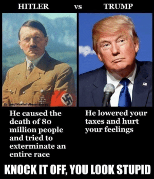 Grandma is Knocking Down Them Stawmen: HITLER  TRUMP  VS  fb.com/MentallyEmancipetad  He lowered your  taxes and hurt  He caused the  death of 80  million people  and tried to  your feelings  exterminate an  entire race  KNOCK IT OFF, YOU LOOK STUPID Grandma is Knocking Down Them Stawmen