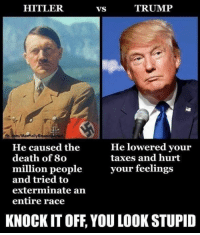 Memes, Taxes, and Death: HITLER  VS  TRUMP  fb.com/Mantally Emane  He lowered vour  taxes and hurt  He caused the  death of 80  million peopleyour feelings  and tried to  exterminate arn  entire race  KNOCK IT OFF, YOU LOOK STUPID