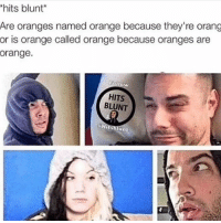 hitsblunt love my followers doubletap if you're active: hits blunt  Are oranges named orange because they're orang  or is orange called orange because oranges are  orange.  Eonow  HITS  BLUNT  Hit un hitsblunt love my followers doubletap if you're active