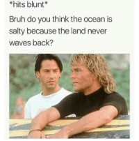 Bruh, Dude, and Memes: *hits blunt  Bruh do you think the ocean is  salty because the land never  waves back? Dude!! Follow @TOPTREE for the funniest stoner memes on IG 🔥 @TOPTREE 👈