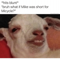 "Bruh, Memes, and Snapchat: hits blunt  ""bruh what if Mike was short for  Micycle?"" *hits blunt again* Jimothy, Shawnathon & Micycle... I'm a fricken genius! . . . . . mindblown butwhatif . . . 👉 Snapchat : TheSlothYodeler 👈"