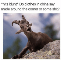 Clothes, Memes, and Shit: *hits blunt* Do clothes in china say  made around the corner or some shit?  Shitheadsteve @stoner_humor_