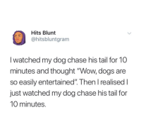 "Dogs, Wow, and Chase: Hits Blunt  @hitsbluntgram  I watched my dog chase his tail for 10  minutes and thought ""Wow, dogs are  so easily entertained"". Then I realised I  just watched my dog chase his tail for  10 minutes. I feel stupid"