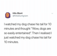 "Dogs, Wow, and Chase: Hits Blunt  @hitsbluntgram  I watched my dog chase his tail for 10  minutes and thought ""Wow, dogs are  so easily entertained"". Then l realised I  just watched my dog chase his tail for  10 minutes."