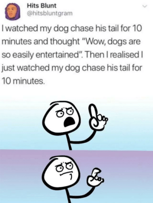 "Men are dogs i guess…: Hits Blunt  @hitsbluntgram  I watched my dog chase his tail for 10  minutes and thought ""Wow, dogs are  so easily entertained"". Then I realised I  just watched my dog chase his tail for  10 minutes. Men are dogs i guess…"