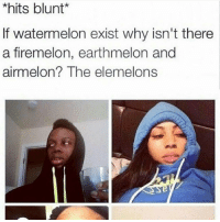 Firemelon: *hits blunt  If watermelon exist why isn't there  a firemelon, earthmelon and  airmelon? The elemelons