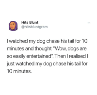 """Dogs, Tumblr, and Wow: Hits Blunt  ohitsbluntgram  I watched my dog chase his tail for 10  minutes and thought """"Wow, dogs are  so easily entertained"""". Then l realised I  just watched my dog chase his tail for  10 minutes. @studentlifeproblems"""