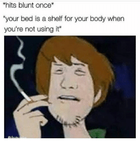 "Memes, Best, and Comedy: *hits blunt once*  ""your bed is a shelf for your body when  you're not using it"" @Stonerjoke Is The Best Stoner Comedy Page On IG!!"