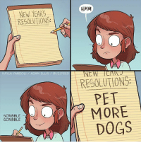Dogs, Memes, and Buzzfeed: HMM  NEW YEARS  RESOLUTION  KAYLA YANDOLI ADAM ELLIS/ BUZZFEED  RESOLUTION  PET  MORE  DOGS  SCRIBBLE  SCRIBBLE Ok!!!