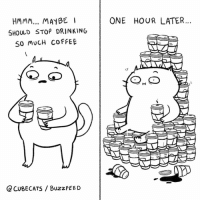 Drinking, Memes, and Buzzfeed: HMMM... MAYBE  ONE HOUR LATER...  SHOULD STOP DRINKING  SO MUCH COFFEE  hr  CUBECATS / BuzzfEED I'll never stop ☕️ (by @cubecats)