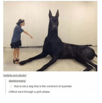 week supply 💯: hobbits-and-destiel:  skeletonwang:  that is not a dog that is the continent of australia  clifford went through a goth phase week supply 💯