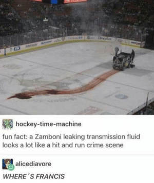 I understood that reference: hockey-time-machine  fun fact: a Zamboni leaking transmission fluid  looks a lot like a hit and run crime scene  alicediavore  WHERE 'S FRANCIS I understood that reference