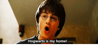 """""""Are you reading Harry Potter again?"""": Hogwarts is my home! """"Are you reading Harry Potter again?"""""""