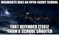 (GC) Since they love Harry Potter references: HOGWARTS WAS AN OPEN-CARRY SCHOOL  THAT DEFENDED ITSELF  FROM A SCHOOL SHOOTER  imgfip.com (GC) Since they love Harry Potter references