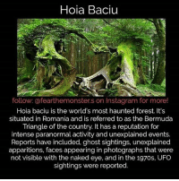 Who's from Romania? -fer: Hoia Baciu  follow: @fearthemonster.s on Instagram for more!  Hoia baciu is the world's most haunted forest. It's  situated in Romania and is referred to as the Bermuda  Triangle of the country. It has a reputation for  intense paranormal activity and unexplained events.  Reports have included, ghost sightings, unexplained  apparitions, faces appearing in photographs that were  not visible with the naked eye, and in the 197os, UFO  sightings were reported. Who's from Romania? -fer