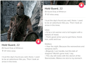 by far the best profile I've encountered: Hold Guard, 22  Guard Duty at Whiterun  87 miles away  I trust the day's found you well, thane. I used  to be an adventurer like you. Then I took an  arrow in the knee.  Likes:  I'd be a lot warmer and a lot happier with a  bellyful of mead.  That's good armor you've got there, friend.  Iron, solid and true.  Dislikes:  Hold Guard, 22  I fear the night. Because the werewolves and  vampires don't  Brigands I can handle, but this talk of  dragons? World's gone mad, I say.  This city still reeks with the stench of the  .  Guard Duty at Whiterun  87 miles away  I trust the day's found you well, thane. I used  to be an adventurer like you. Then I took an  Stormcloaks. Makes me sick to my stomach.  arrow in the knee. by far the best profile I've encountered