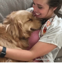 Dank, Good, and 🤖: holdenthegolden IG All worries go away when reunite with your good boi after a long day.  By holdenthegolden_ | IG