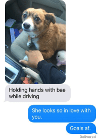 Af, Bae, and Driving: Holding hands with bae  while driving  She looks so in love with  you.  Goals af  Delivered
