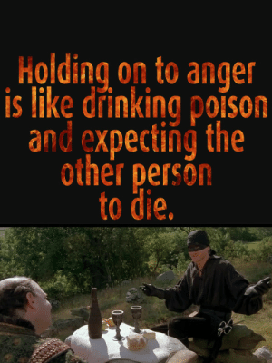 Drinking, Strategy, and Poison: Holding on to anger  is like drinking poison  and expecting the  other persón  to die. It is a valid strategy