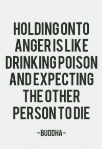 """Drinking, Tumblr, and Blog: HOLDING ONTO  ANGERIS LIKE  DRINKING POISON  ANDEXPECTING  THE OTHER  PERSON TODIE  -BUDDHA <p><a href=""""http://great-quotes.tumblr.com/post/151556235442/anger-352x512-more-cool-quotes"""" class=""""tumblr_blog"""">great-quotes</a>:</p>  <blockquote><p>Anger [352x512]<br/><br/><a href=""""http://cool-quotes.net/"""">MORE COOL QUOTES!</a></p></blockquote>"""
