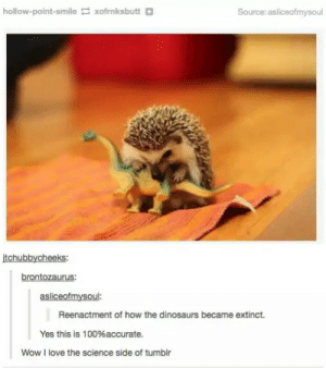 Science Side of Tumblr: Extinction of the Dinosaurs: hollow-point-smile xofrnksbutt+  Source: asliceofmysoul  tchubbycheeks:  brontozaurus:  asliceofmysoul:  Reenactment of how the dinosaurs became extinct.  Yes this is 100% accurate.  Wow I love the science side of tumbir Science Side of Tumblr: Extinction of the Dinosaurs