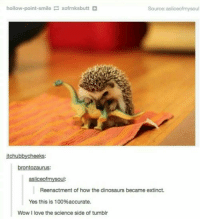 "Anaconda, Love, and Tumblr: hollow-point-smilexofrnksbutt+  Source: asliceofmysoul  itchubbycheeks:  brontozaurus:  asliceofmysoul:  Reenactment of how the dinosaurs became extinct.  Yes this is 100%accurate.  Wow I love the science side of tumblr <p>Accurate via /r/wholesomememes <a href=""https://ift.tt/2JS7EbV"">https://ift.tt/2JS7EbV</a></p>"