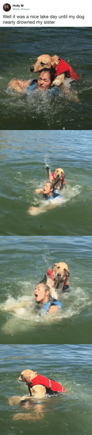 Target, Tumblr, and Twitter: Holly M  @Holly Monson  Well it was a nice lake day until my dog  nearly drowned my sister   Tie tastefullyoffensive:  Still a good boy. (via Holly_Monson)
