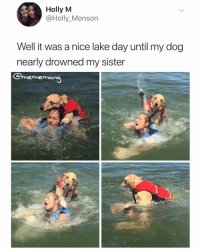 Best Friend, Best, and Dank Memes: Holly M  @Holly_Monson  Well it was a nice lake day until my dog  nearly drowned my sister  merme  mang Man's best friend