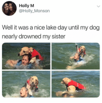 Memes, Twitter, and Say It: Holly M  @Holly_Monson  Well it was a nice lake day until my dog  nearly drowned my sister I would say it went swimmingly. Twitter holly_monson