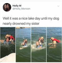 Memes, Hell, and Nice: Holly M  @Holly_Monson  Well it was a nice lake day until my dog  nearly drowned my sister Y the hell arent u following @kalesaladanimals yet