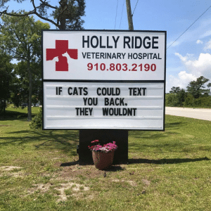 Cats, Hospital, and Text: HOLLY RIDGE  VETERINARY HOSPITAL  910.803.2190  IF CATS COULD TEXT  YOU BACK.  THEY WOULDNT If cats could text you back,