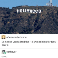 i'm so hungry: HOLLYWeeD  afloweroutofstone  Someone vandalized the Hollywood sign for New  Year's  sex haver  good i'm so hungry