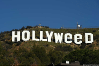 Remember how we started 2017 https://t.co/OoOTBtA25C: HOLLYWeeD  @stoned2 thabones Remember how we started 2017 https://t.co/OoOTBtA25C