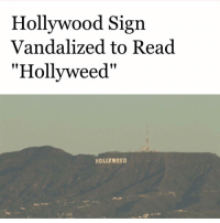 "First day of 2017 😂🙌: Hollywood Sign  Vandalized to Read  ""Hollyweed""  HOLLY WeED First day of 2017 😂🙌"