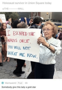 Survivor, Holocaust, and Square: Holocaust survivor in Union Square today  /THEWALL  L ESCAPED THE  NAZIS ONCE  OU WILL NOT  DEFEAT ME NOW  Warhawk42 Poet 6h  Somebody give this lady a gold star
