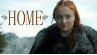Memes, Sansa Stark, and Sirius: HOME An amazing tribute to one of the more underrated characters in this series, Sansa Stark.   •Sirius Stark•