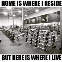 Memes, True, and Home: HOME IS WHERE I RESIDE  mystrength41  BUT HERE ISWHEREILIVE True dat 🙌