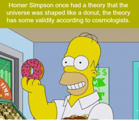 Homer Simpson: Homer Simpson once had a theory that the  universe was shaped like a donut, the theory  has some validity according to cosmologists.