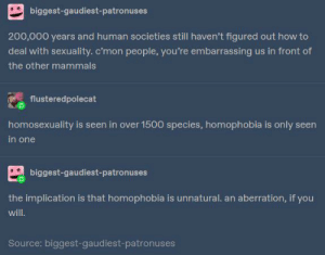 Homophobia : the disgusting flaw of the human race: Homophobia : the disgusting flaw of the human race