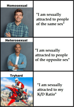"Sex, Homosexual, and Heterosexual: Homosexual  ""I am sexually  attracted to people  of the same sex""  Heterosexual  ""I am sexually  attracted to people  of the opposite sex""  Tryhard  ""I am sexually  attracted to my  K/D Ratio"" Tryhardosexual"