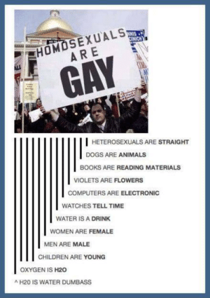 Animals, Books, and Children: HOMOSEXUALS  ARE,  GAY  HETEROSEXUALS ARE STRAIGHT  DOGS ARE ANIMALS  BOOKS ARE READING MATERIALS  VIOLETS ARE FLOWERS  COMPUTERS ARE ELECTRONIC  WATCHES TELL TIME  WATER IS A DRINK  WOMEN ARE FEMALE  MEN ARE MALE  CHILDREN ARE YOUNG  OXYGEN IS H20  H20 IS WATER DUMBASS Heterosexuals are straight