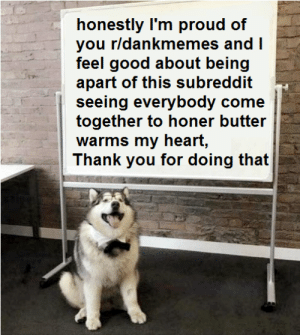 Thank You, Good, and Heart: honestly I'm proud of  you r/dankmemes and I  feel good about being  apart of this subreddit  seeing everybody come  together to honer butter  warms my heart,  Thank you for doing that Thank you for being so nice.