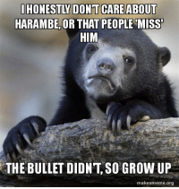 I'm sorry, but all the Harambe posts are not interesting or funny, or really anything to me.: HONESTY DONT CARE ABOUT  HARAMBE OR THAT PEOPLE MISS  HIM  THE BULLET DIDNT SO GROW UP  makeameme org I'm sorry, but all the Harambe posts are not interesting or funny, or really anything to me.