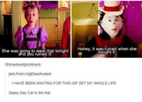 Cats, Dank, and Gif: Honey, it bought  when she  She was going to wear that tonight  50shadesofpitchblack:  jack-frost-rotgDeactivated  IHAVE BEEN WAITING FOR THIS GIF SET MY WHOLE LIFE  Sassy Gay Cat in the Hat.